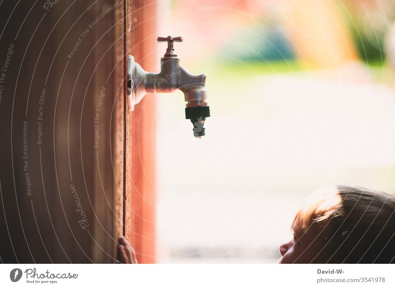 Child in summer Water shortage Toddler Garden Tap Drops of water Observe Cute water scarcity Drought look at too Wall (building) Wooden wall explore