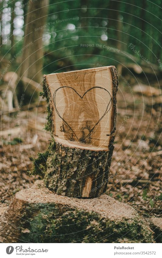 #S# Forest love III Love Heart Love of nature Nature reserve close to nature Experiencing nature Environment Deserted Carve Craft (trade) Tree trunk