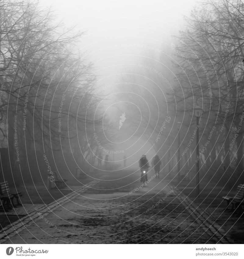 A cyclist on a fall day in the park autumn balck and white beautiful Berlin bicycle Bike biker black city cold cold temperature commute cycling direction
