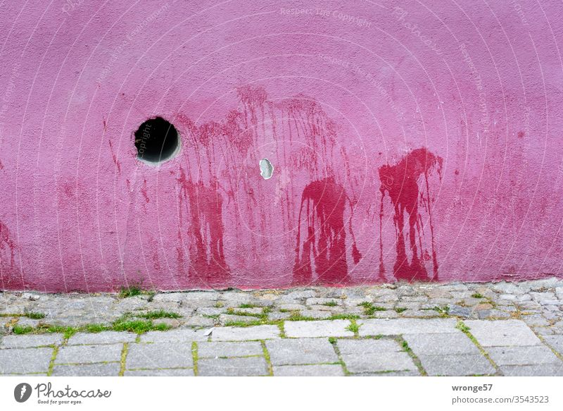 Spots on a pink house wall stains Markings Urinated Urine stains Facade Wall (building) variegated Exterior shot Deserted Colour photo opening Day off Footpath