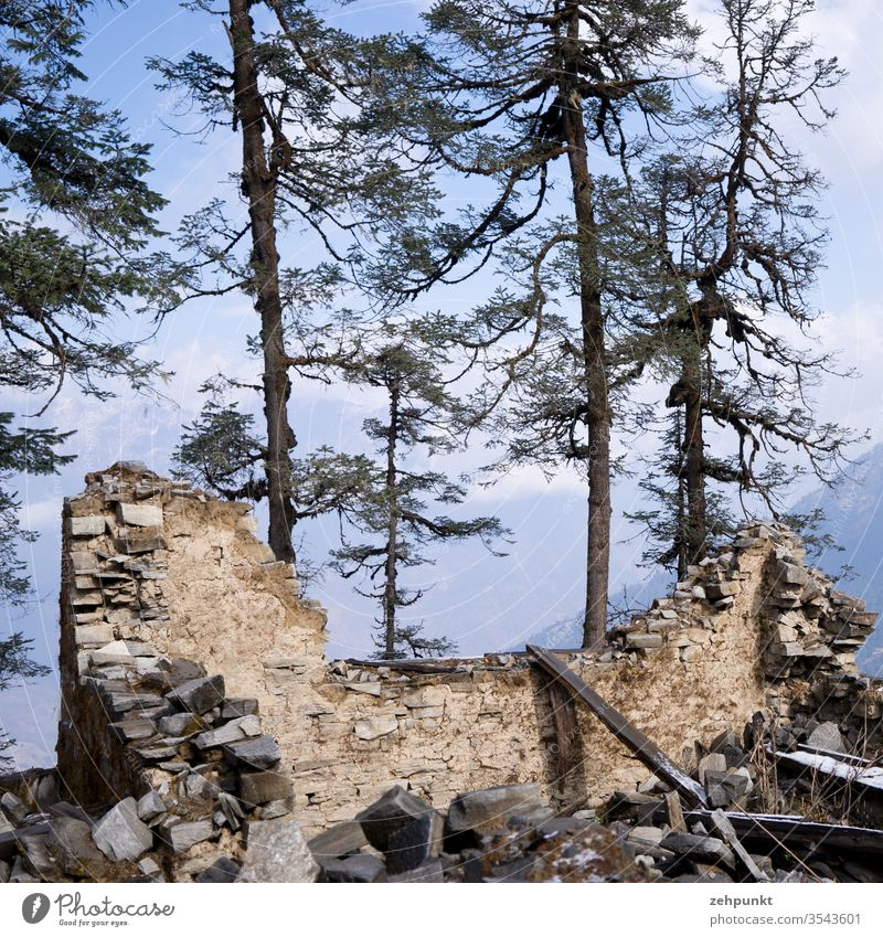 remains of a house in front of trees Ruin Earthquake House (Residential Structure) collapsed walls huts Nepal