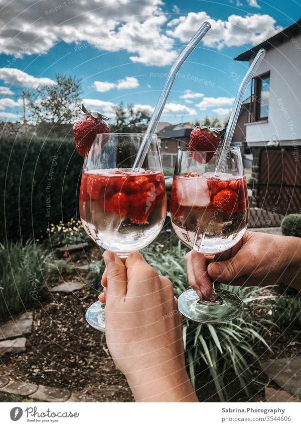 Wine glasses filled with sparkling wine, raspberries and strawberries on a summer day, Hesse, Sauerland, Germany Aperitif Sparkling wine Raspberry Strawberry
