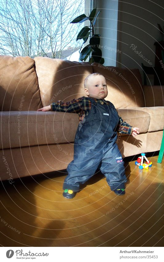 Niklas extra cool Toddler Living room Sofa Parquet floor Window Cushion Autumn Light Posture Man blue dungarees bare trees beige-brown