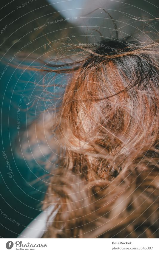 #As# wind-driven Wind Gust of wind Gale Windblown hair Blow blowing hair Hair and hairstyles Hairy Haircut Woman Anonymous Human being feminine