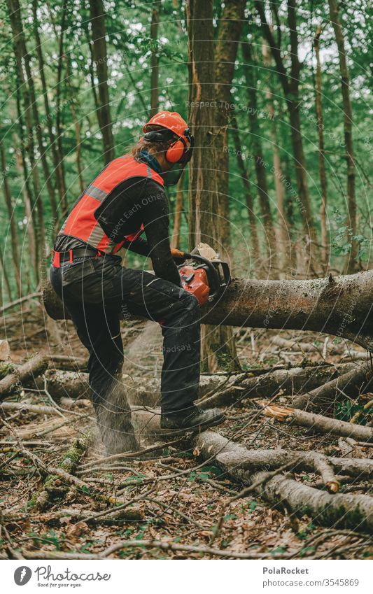 #S# Forest Workers in Action II Lumberjack wood Firewood Chainsaw Protective equipment Helmet Meter beeches Wood work Nature tree Woodcutter Forestry Tree trunk