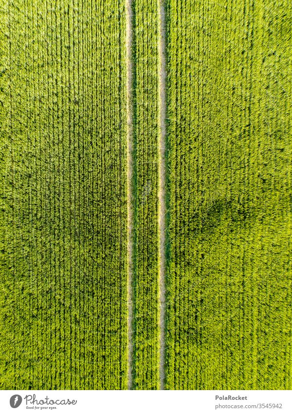 #S# Straight green To go for a walk Deserted Bird's-eye view Long shot Colour photo Exterior shot spring Meditative drone Religion and faith Hiking Above Field