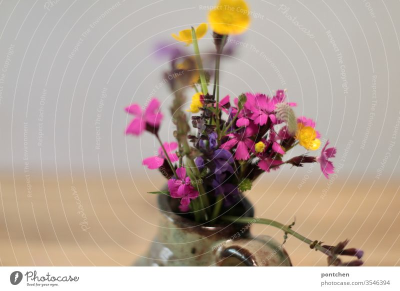 Buttercup, verbena sage, Carthusian carnation, A colourful, self-picked bunch of meadow flowers in a small vase wild flowers Vase variegated pink Yellow purple