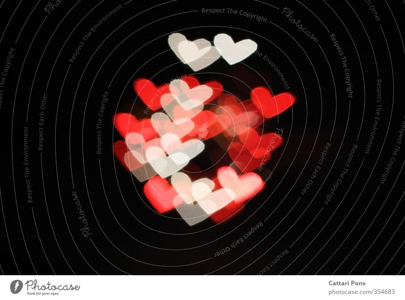 White Red Love Warmth Heart Romance Infatuation Event Visual spectacle Valentine's Day Night life Mother's Day