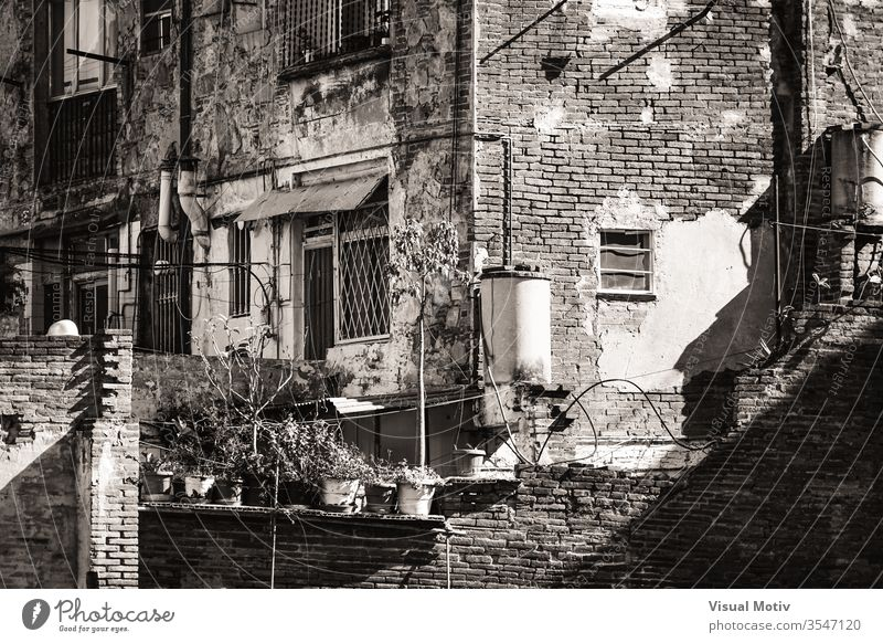 Backyards, balconies and windows of modest old brick houses - Black and White afternoon afternoon light architectonic architectural architecture background