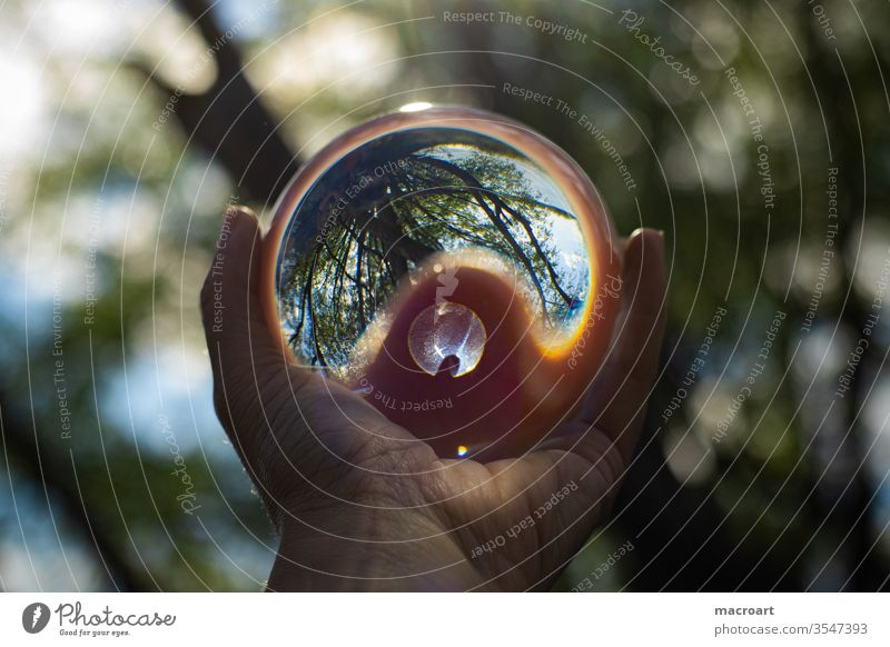 glass ball Glass ball Exterior shot Sphere Day Close-up Light Reflection Colour photo Nature Glittering Round Environment Deserted by hand stop