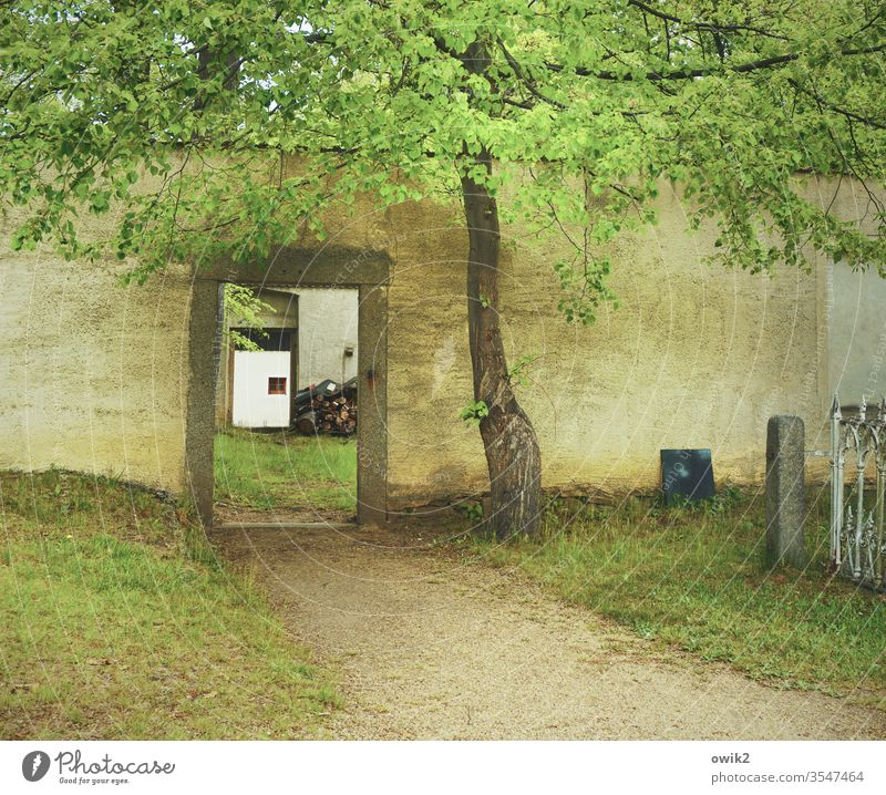 a way out Cemetery cemetery wall door gate Way out Lanes & trails Meadow Grass Grave Tombstone tree Passage Old Death Exterior shot weaker Deserted Colour photo