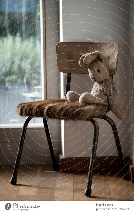 What am I doing here? Table Wall (barrier) Wall (building) Toys Cuddly toy Observe Wait Old Cute Soft Brown Serene Boredom Sadness Fatigue Loneliness Exhaustion