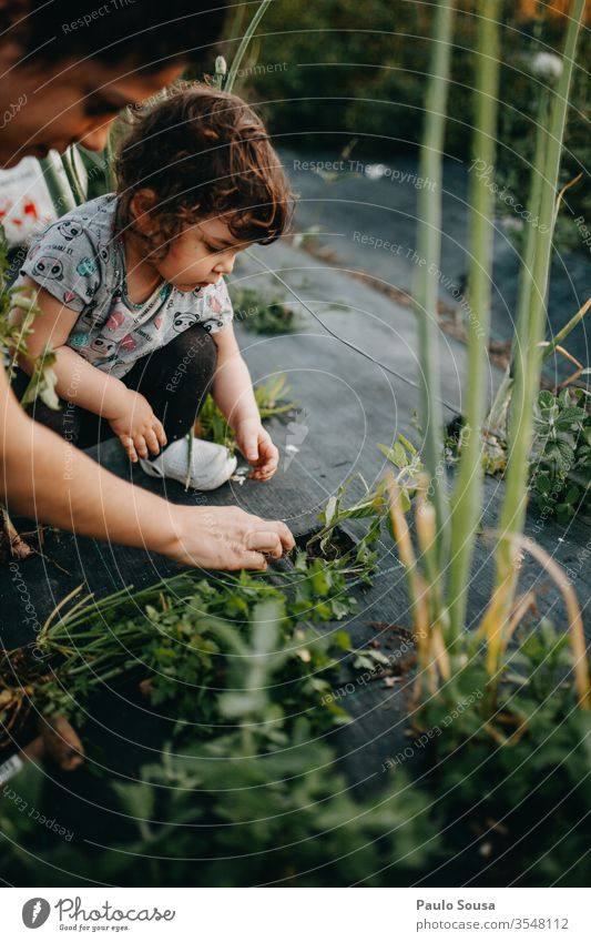 Mother and Daughter gardening Tomato planting motherhood Child Together togetherness Lifestyle Family & Relations Infancy care Parents Love Toddler Happiness