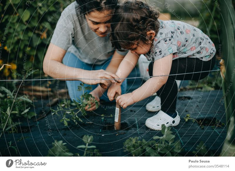 Mother and Daughter gardening motherhood Child 18 - 30 years 30 - 45 years 1 - 3 years Parents 3 - 8 years Exterior shot Woman Adults Family & Relations