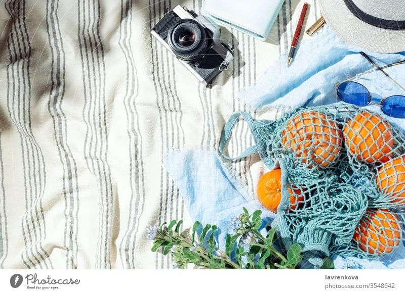 Summer picnic flatlay, fruits, berries and lemon water on striped cotton blanket bouquet camera citrus cold film flowers food fresh sunglasses grapefruit