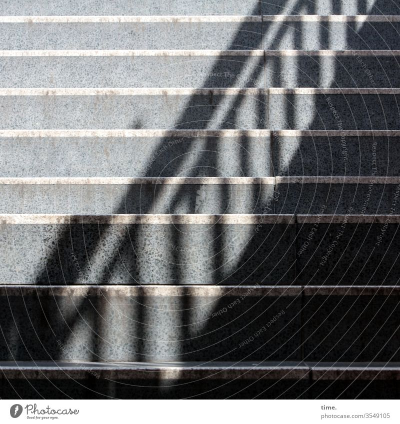 parallel world Stairs Banister stair treads sunny Stone Shadow sales mark Visual spectacle Parallel Gray Sunlight up