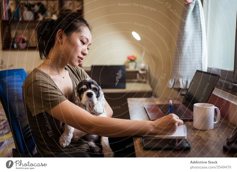 Busy Asian female entrepreneur working in home office at home pen paper notebook writing woman project notepad multitask take notes ethnic asian sit dog