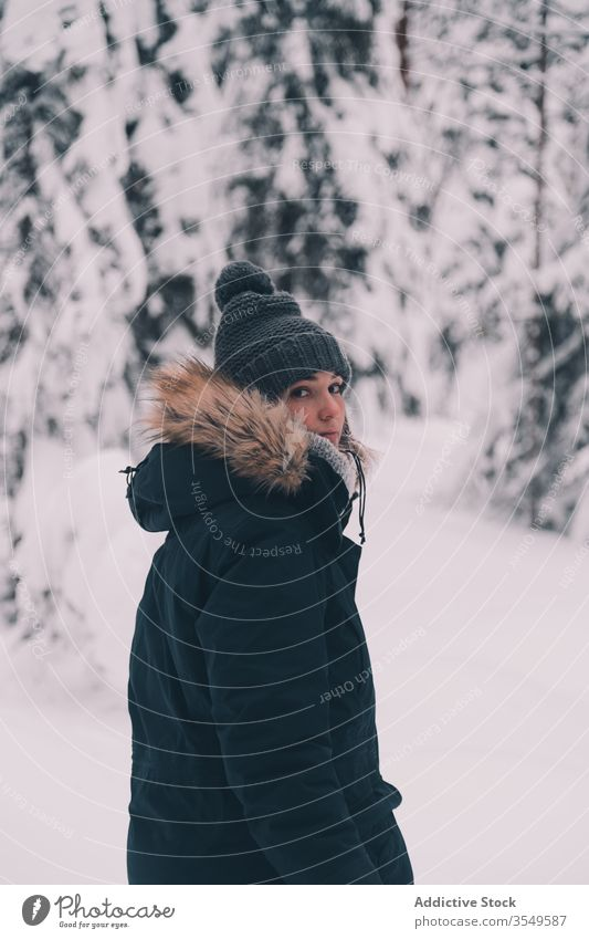 Traveler walking in snowy forest traveler winter woman tree spruce coniferous stand nature finland female cold season white weather tranquil lifestyle frozen