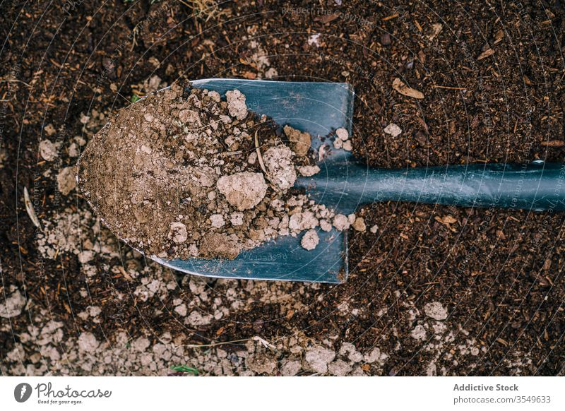 Shovel with soil in garden shovel ground instrument equipment farm dig tool cultivate spade countryside agriculture field daytime spring growth season plant