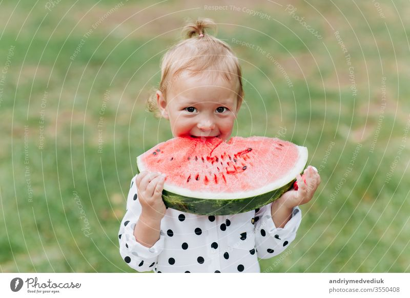 cute little girl eating big piece of watermelon on the grass in summertime. Adorable little girl playing in the garden biting a slice of watermelon. selective focus
