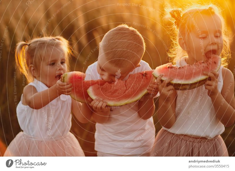 happy kids eating watermelon. Kids eat fruit outdoors. Healthy snack for children. Little girls and boy playing in the garden biting a slice of water melon. warm and sunny summer day