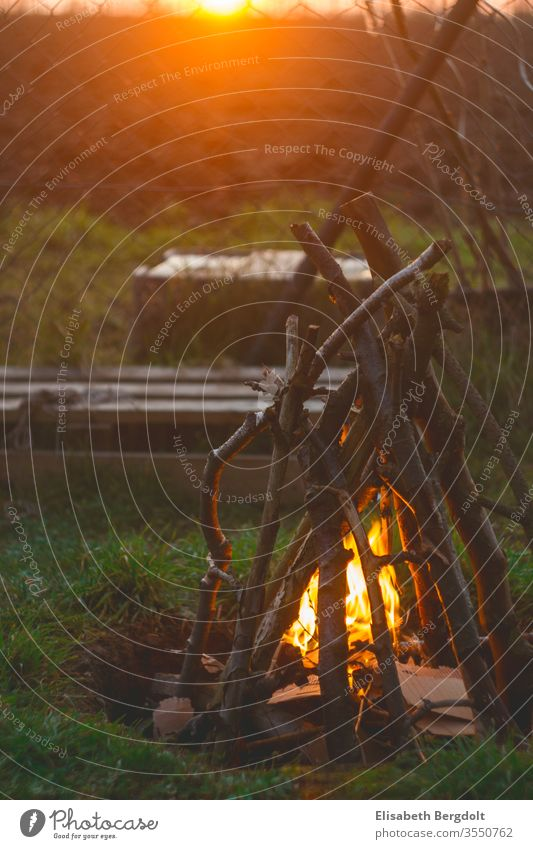 Campfire in the garden at sunset campfire Camp fire atmosphere vacation campfire romanticism out Sunset Garden Fire sunshine Cozy be out