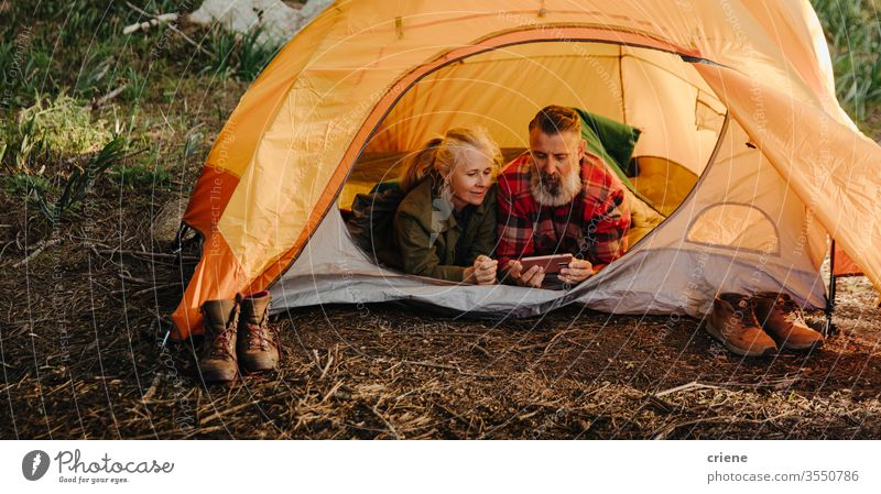 Caucasian elderly couple browsing on phone while laying in bedroll in tent smartphone technology smile connected forest internet online happy enjoying active