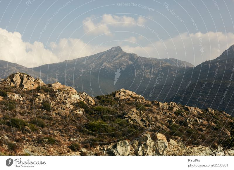 Mountain peaks in Corsica in summer outlook Mediterranean Panorama (View) ascent Mediterranean sea Vacation & Travel Colour photo Nature Exterior shot Tourism