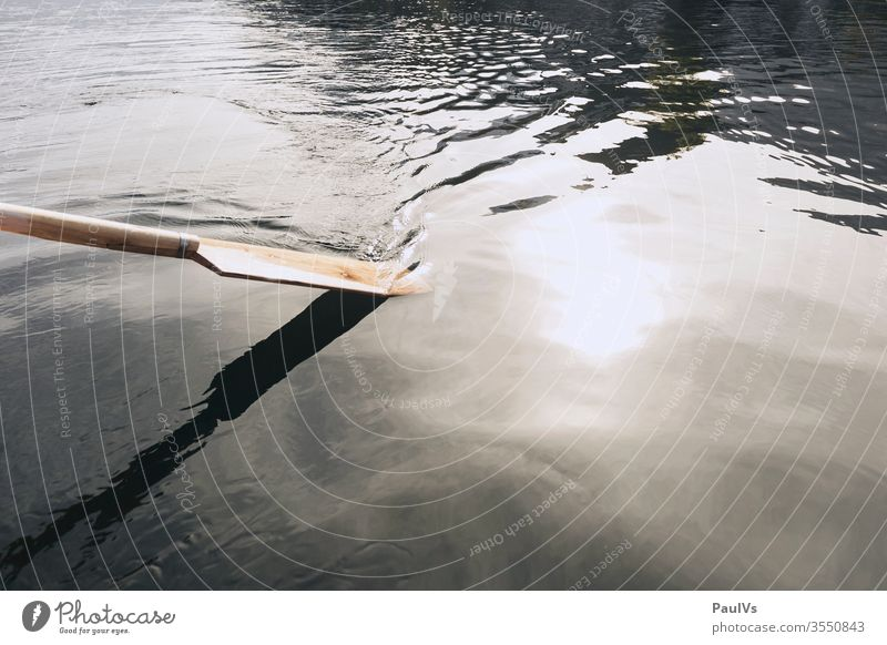 Wooden oars in water Oar wooden rudder Water go boating Rowing Nature Lake Ocean River Brook Pond Rowboat Carriage Craft Stack Calm Salzkammergut Upper Austria