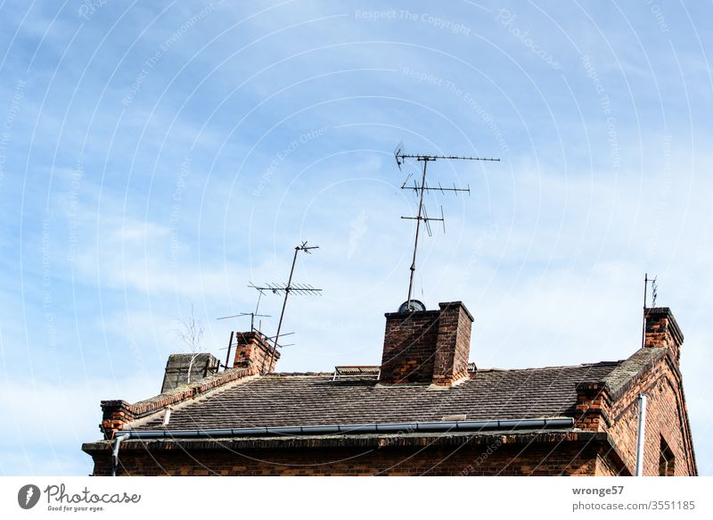 Analogue TV antennas antenna forest House (Residential Structure) Roof Tiled roof old house analog TV TV reception television aerial Analog Age 1st program