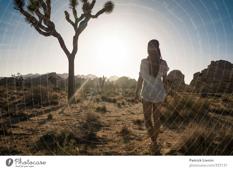 Phoenix Human being Feminine Woman Adults Body 1 Environment Nature Landscape Elements Sand Air Sky Sun Solar eclipse Sunrise Sunset Sunlight Summer Climate