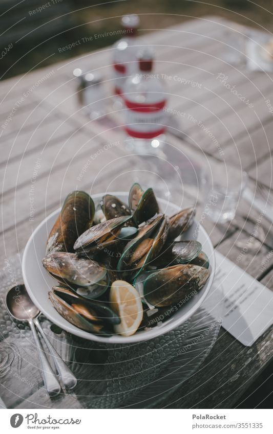 #As# Fresh mussels Restaurant restaurant card Mussel Mussels Fish restaurant Lunch Delicious Mediterranean Food Colour photo Nutrition Dish Meal