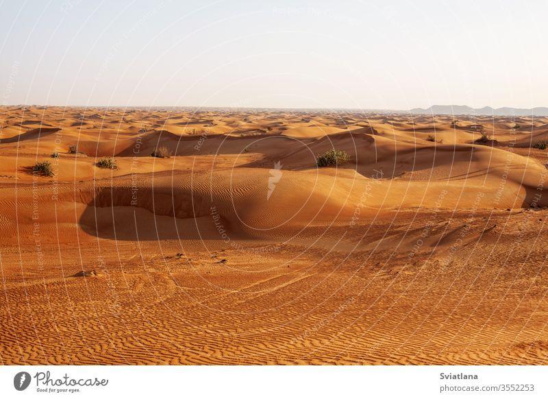 Sand dunes in the desert at sunset in Dubai safari adventure africa african arabian arabic background beautiful blue dry egypt empty erg extreme heat hill