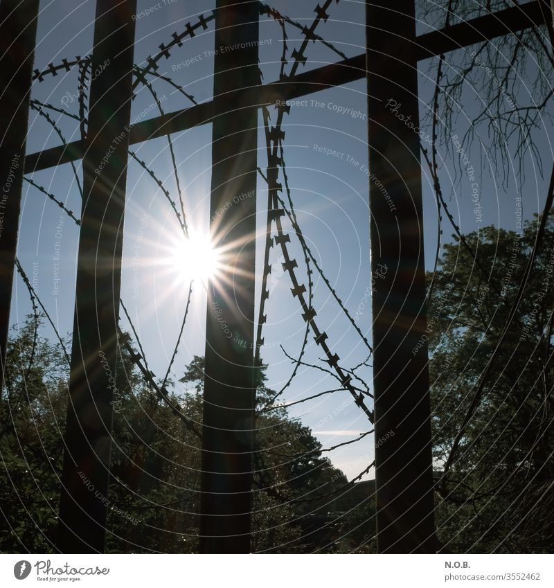 Sun behind bars and barbed wire Grating Metal Exterior shot Deserted Day Safety Protection Fence Colour photo Barrier Border Bans Barbed wire Captured Wire Fear