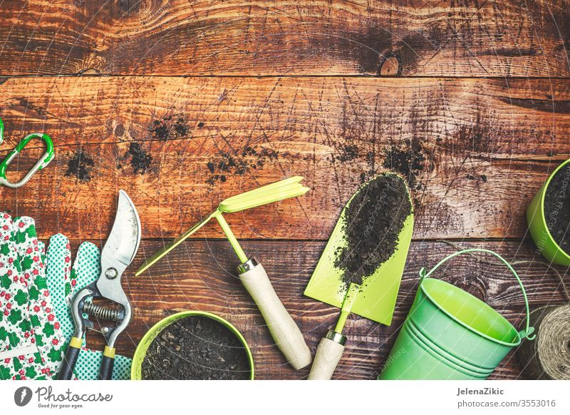 Ready for spring gardening flower green summer growth nature watering flowerpot house outdoors plant floral botanical housework wooden homework blossom tools