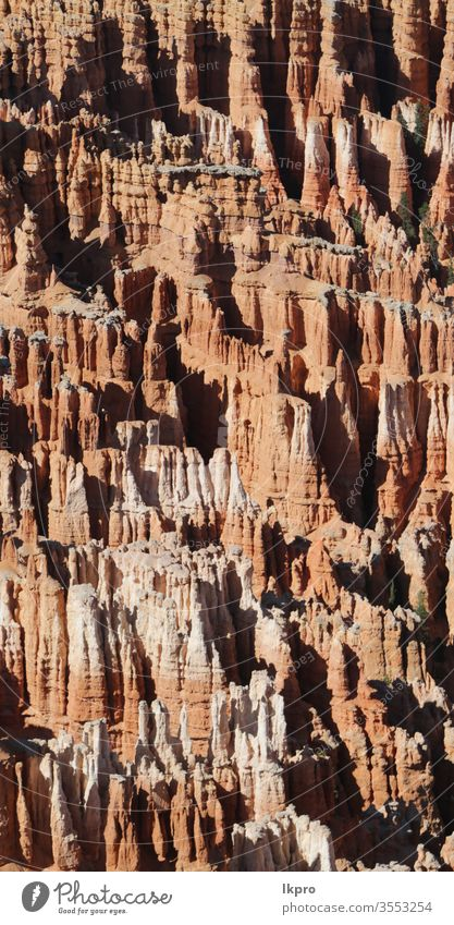 bryce   national  park the beauty of nature thor peek a boo adventure wilderness navajo trail dramatic amphitheater plateau point mountain hiking