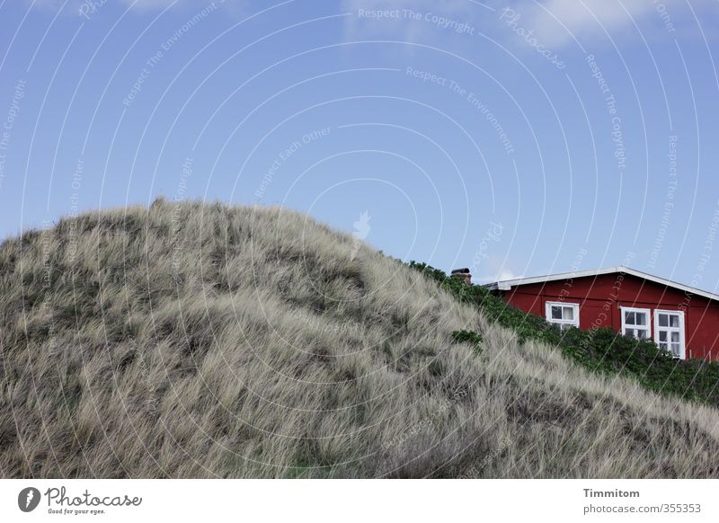 Sky Vacation & Travel Blue Plant House (Residential Structure) Environment Window Emotions Gray Facade Beautiful weather Esthetic Simple Roof North Sea Dune