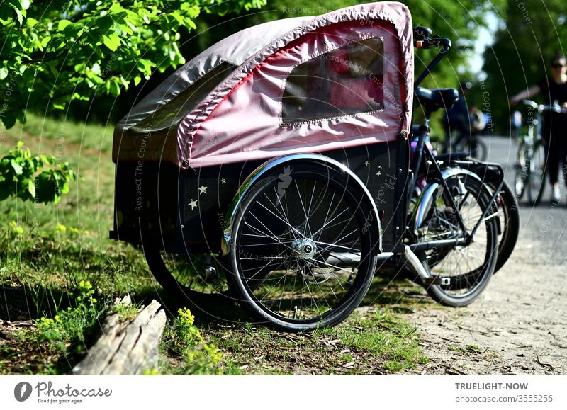 Lasten Fahrrad, an environmentally friendly ecological transporter for children and cones in a convertible version with a pink soft top for trips into nature