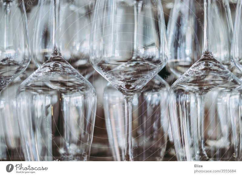 Wine glasses on a shelf wine glasses Glazier Glass Shelves Bear Many Offset through glass Transparent Gastronomy Vine sommelier Close-up Fragile structured