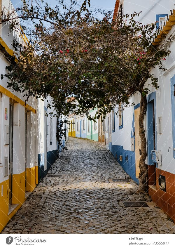 small alley with colourful houses and a tree in Ferragudo, Portugal Europe Alley Old town Vacation & Travel House (Residential Structure) Architecture Deserted