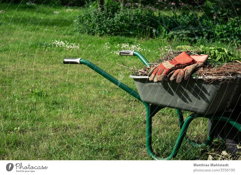 Wheelbarrow with weeds and gardening gloves Garden Gardening Exterior shot Colour photo Plant green Growth Nature Agriculture Farm natural Organic Earth Ground