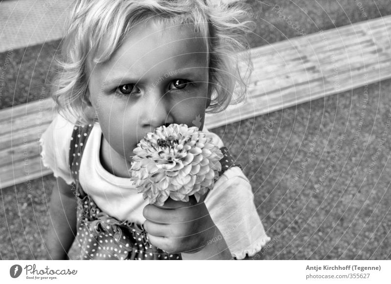 Human being Child White Girl Flower Black Feminine Emotions Blonde Infancy Dress To hold on Toddler 3 - 8 years Sister
