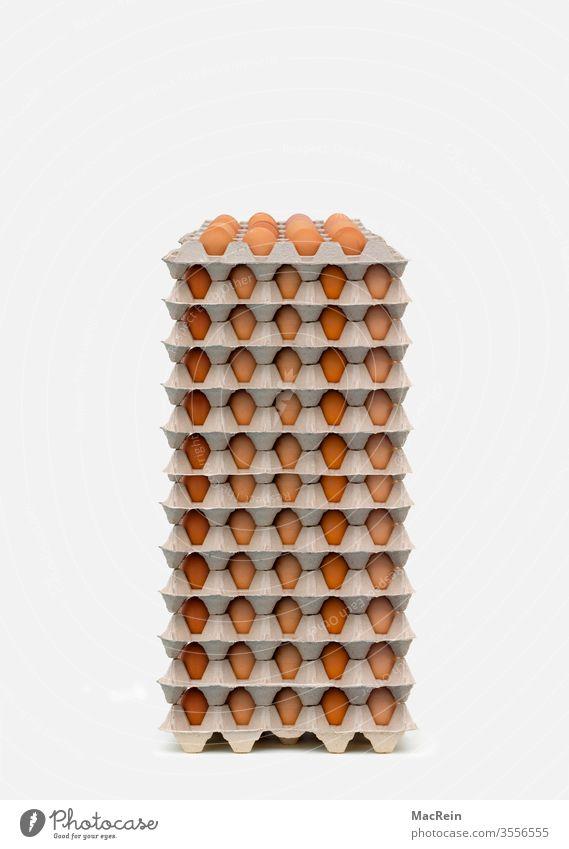 Egg pallets eggs egg pallet Egg carton Bird's eggs chicken fowls Hen's egg Chicken eggs breakfast egg breakfast eggs Eggs cardboard egg cartons nobody
