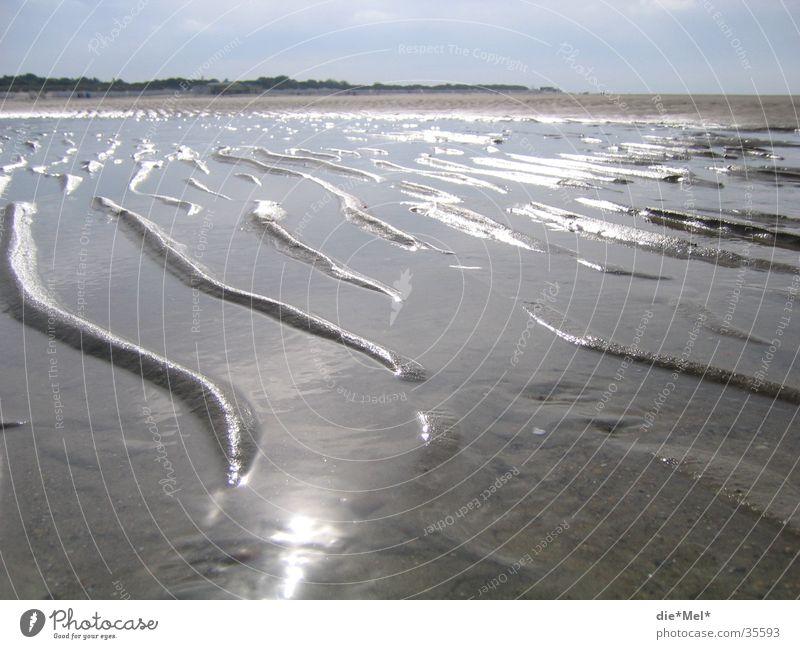 Water Sun Ocean Beach Vacation & Travel Calm Gray Sand Landscape Bright Waves Beach dune Netherlands Algae