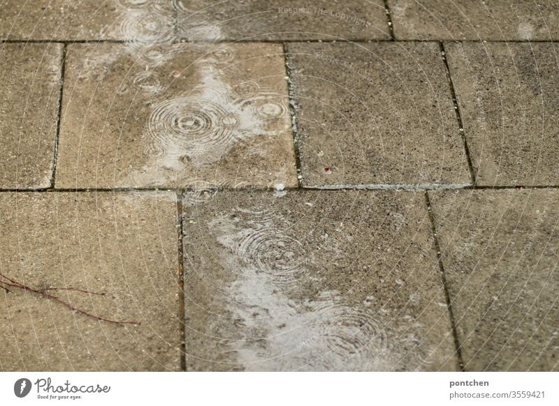 Rainy weather. Bad weather. Rain falls in puddles on paving stones and forms circles. Rain puddle Puddle Weather Wet Nature Reflection interstices Paving stone