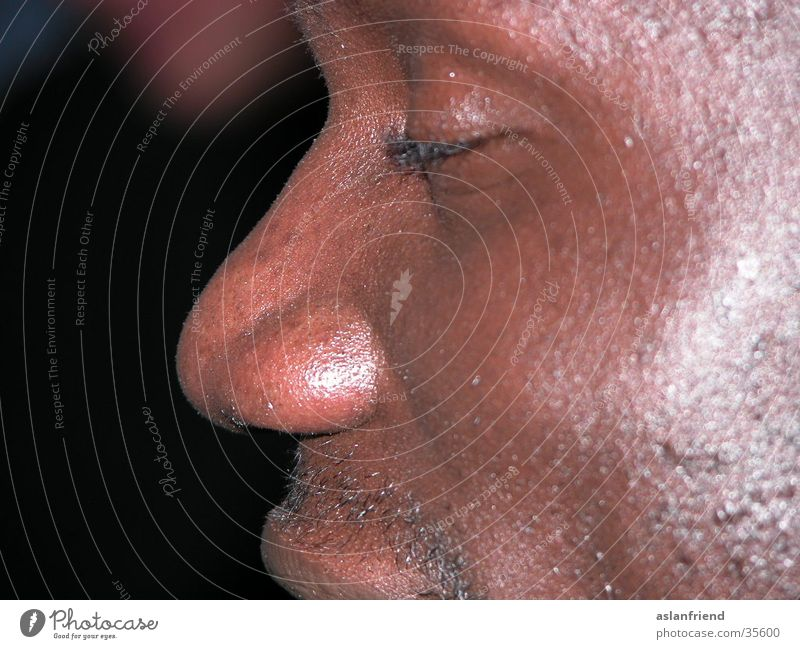 Man Face Brown Skin Glittering Nose Africans Pore Swarthy