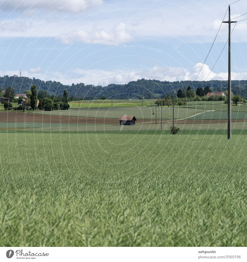 An agricultural landscape, the lower half is a wide field, further fields follow, a power line runs from the right, houses, groups of trees and a path structure the middle ground. Wooded mountain range in the background. Light clouds