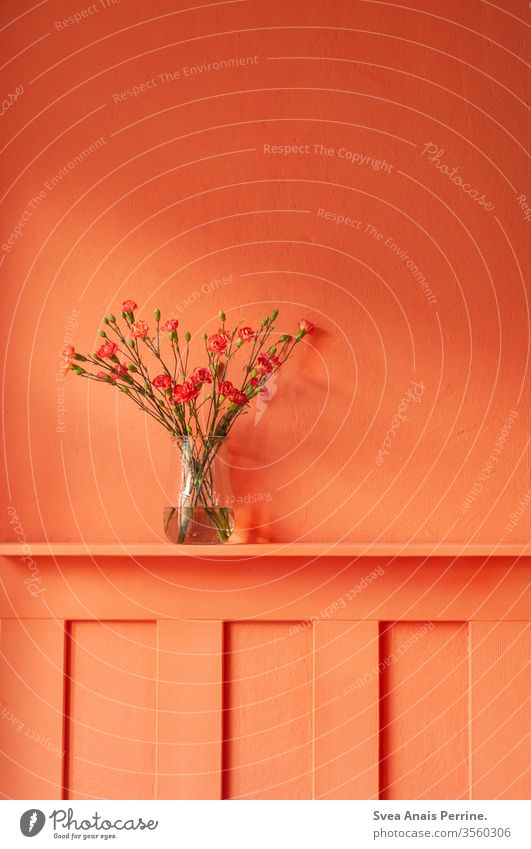 warm colours dwell Bouquet flowers Vase Flat (apartment) Wall (building) wall paint variegated colourful Summer Orange-red Interior shot interior decoration