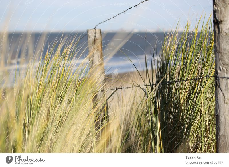 dune Vacation & Travel Beach Ocean Waves Environment Nature Landscape Sand Water Plant Foliage plant Coast North Sea Netherlands Barbed wire fence Threat Safety