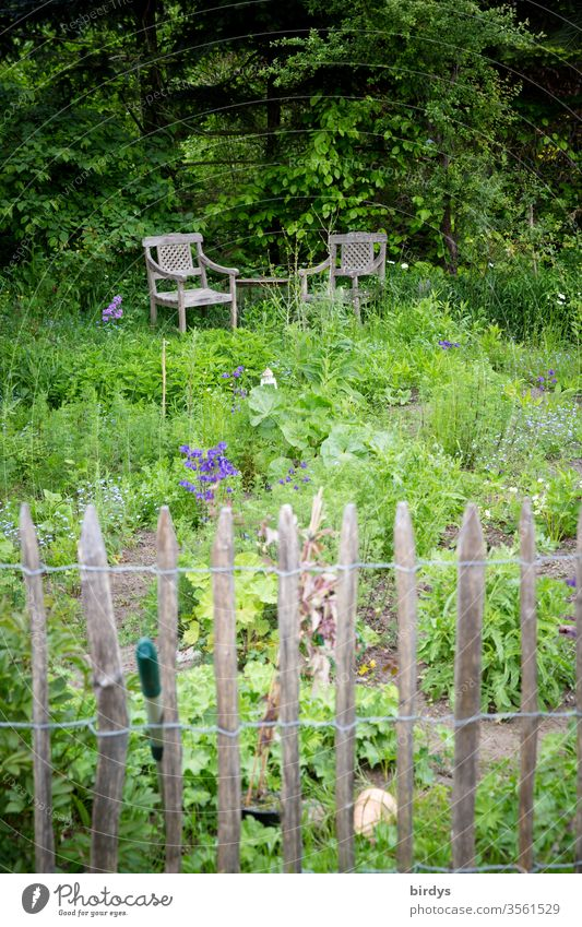 Idyllic farm garden with paling fence and comfortable seating Garden Herb garden Country  garden Biological Vegetable garden Nature Lounges chairs idyllically